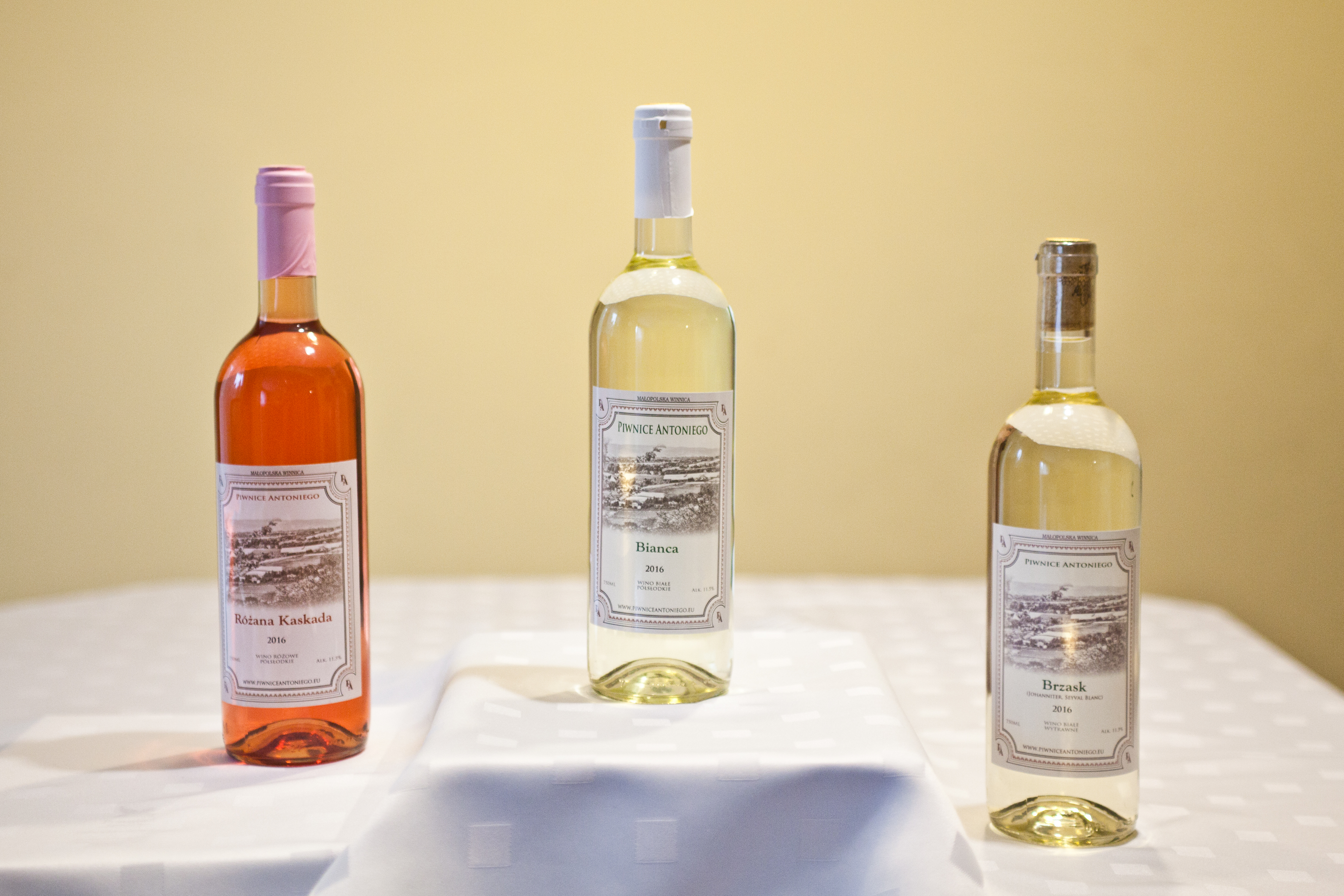 Piwnice Antoniego - Wino